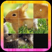 Slide Puzzle - Animal