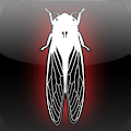 Dark Meadow: The Pact APK for Bluestacks