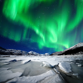 Northern lights in the arctic by Marius Birkeland - Landscapes Starscapes ( sky, northern lights, aurora borealis, aurora, landscape, , renewal, green, trees, forests, nature, natural, scenic, relaxing, meditation, the mood factory, mood, emotions, jade, revive, inspirational, earthly )