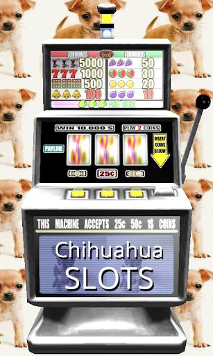3D Chihuahua Slots - Free