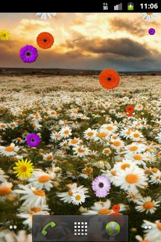 Daisy Live Wallpaper FREE - screenshot