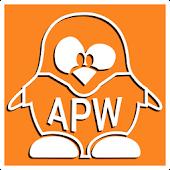 Apw Theme Play Orange