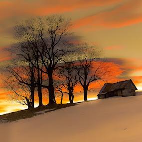 by Jeno Major - Landscapes Prairies, Meadows & Fields