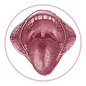 TNM Lip Oral Cavity