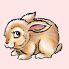 MiniFunnyBunnyFree icon