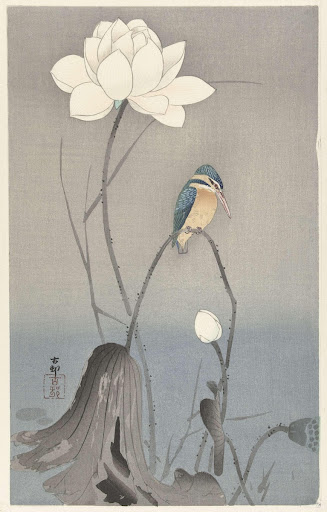Kingfisher with Lotus Flower
