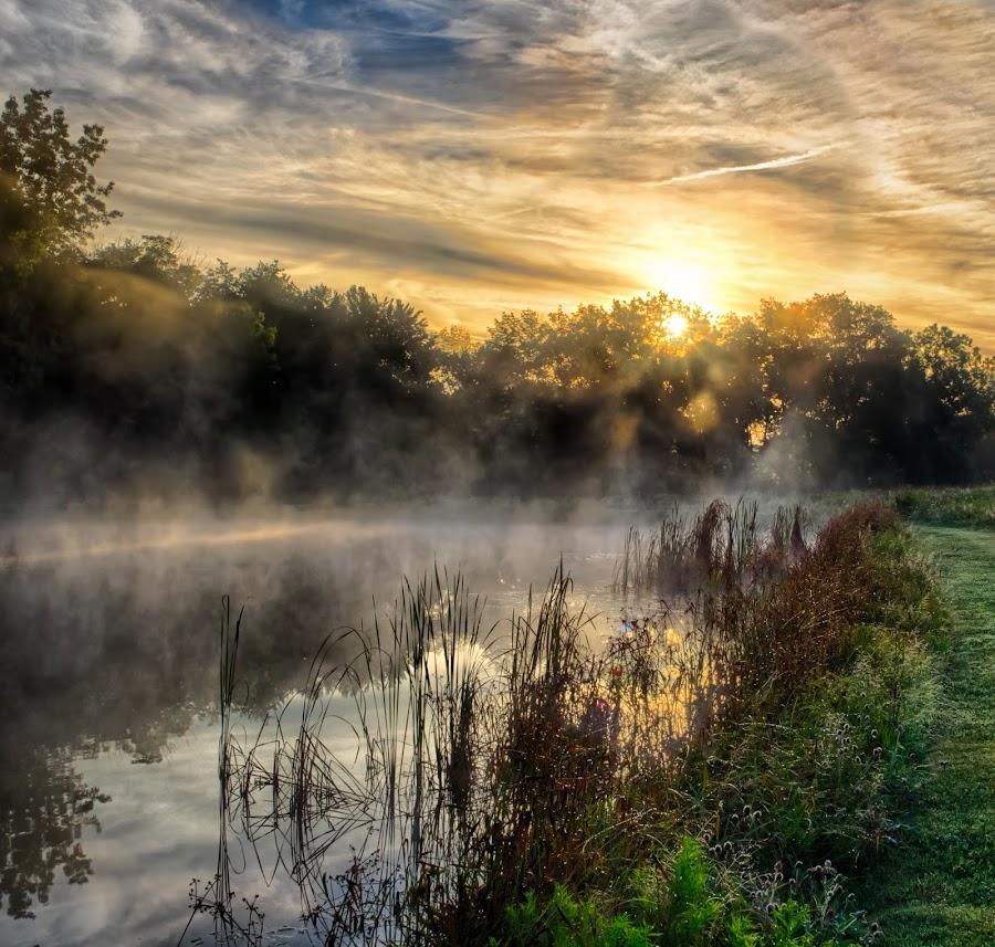 Sunrise Over a Foggy Ohio Pond by Martin Belan - Landscapes Sunsets & Sunrises ( ohio, fog, lakes, fog rising on a pond, sunrise, landscape, , golden hour, sunset )
