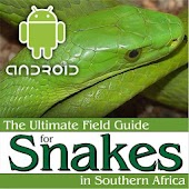 Ultimate Snakes Africa