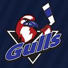 Long Island Gulls icon