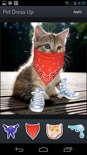 Aviary Stickers: Pet Outfits