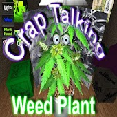 Grow Your Talking Weed Plant