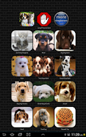 Screenshot of Dog & Cat Ringtones