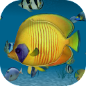 Ocean Tropical 3D HD LWP icon