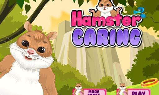 可愛的倉鼠 - 寵物關懷