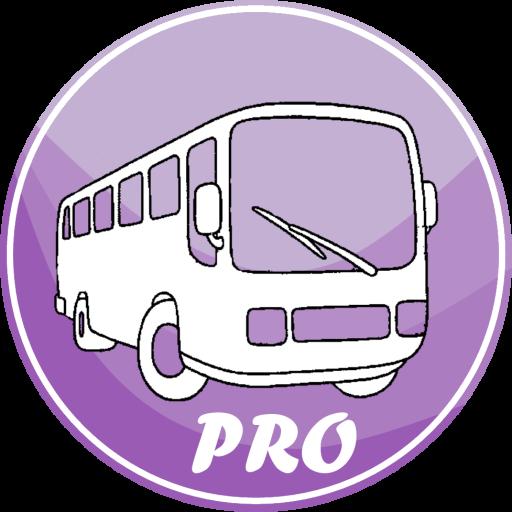 Bus Pucela Pro