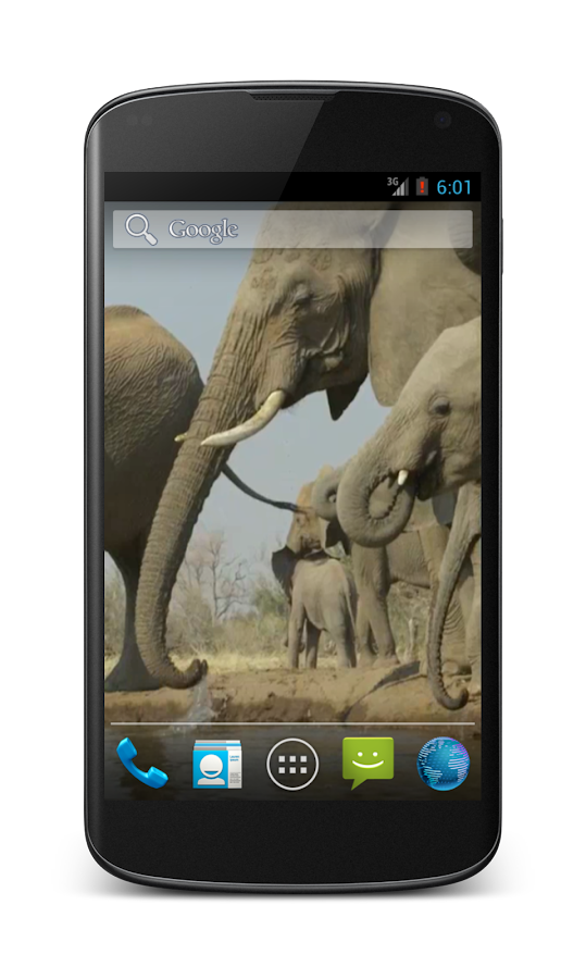 Elephant Free Video Wallpaper - screenshot