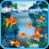 Real Fish Live Wallpaper