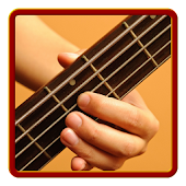 Learn to play Bass Guitar PRO