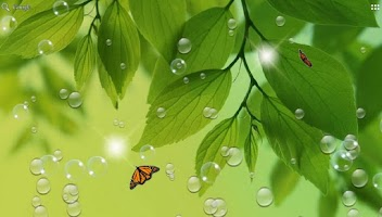 Screenshot of Green Leaf for Galaxy S4