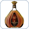 Cognac Companion icon
