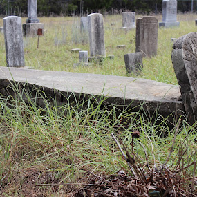 by Jackie Terrell Mosley - City,  Street & Park  Cemeteries