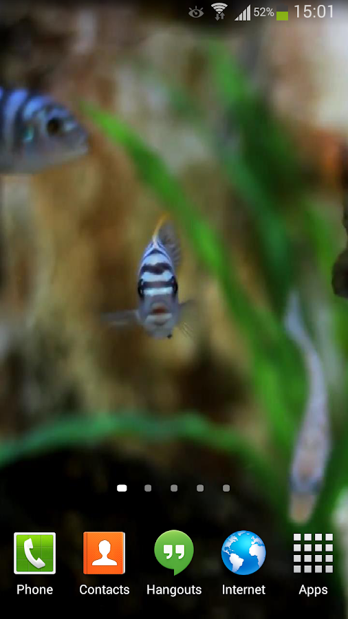 Fish live wallpaper hd android apps on google play for Live fish store