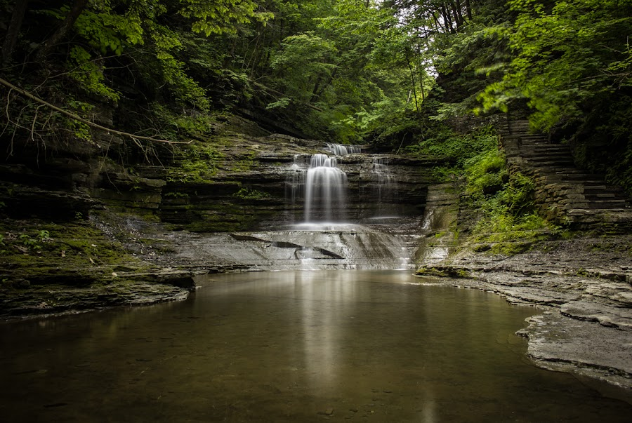 Reflections by Andy Williams - Landscapes Forests ( water, waterfalls, gorge, beautiful, waterfall, ny, newyork, nature, ithacaisgorges, outdoors, ithaca, surreal, longexposure )