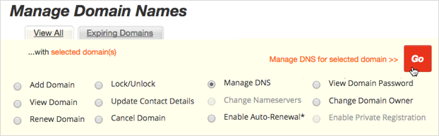 Manage DNS option available