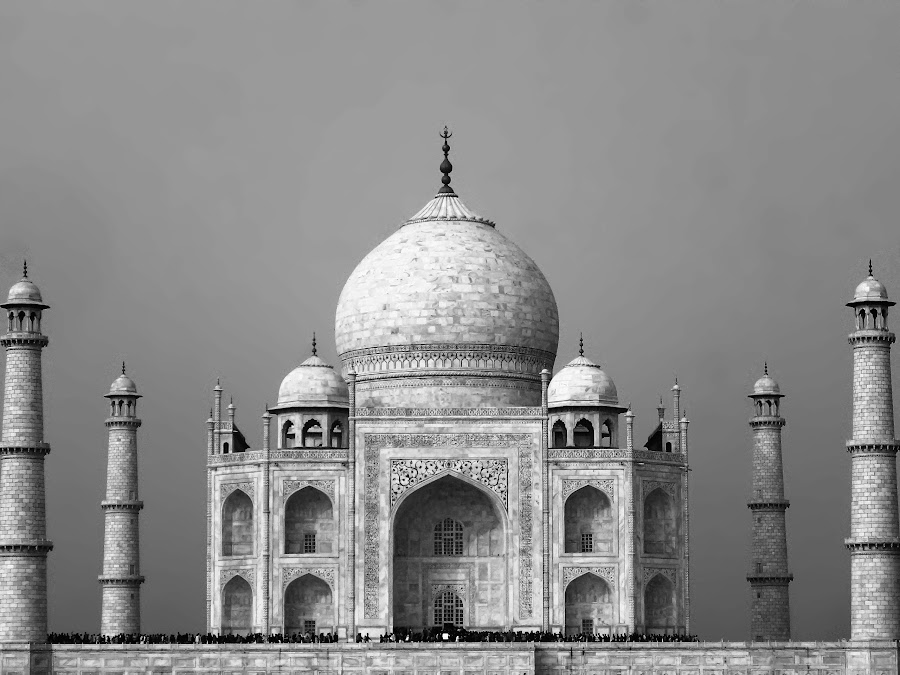 mark of love by Shashank Sharma - Buildings & Architecture Statues & Monuments ( love, taaj mahl, b&w, details, architecture )