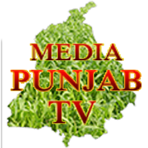 MediaPunjab news screenshot 0