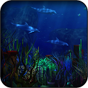 Dolphins 3d Wallpapers icon