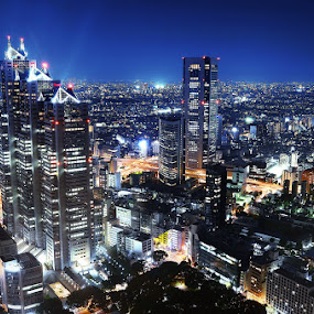 Shinjuku - Tokyo by Darlis Herumurti - City,  Street & Park  Night