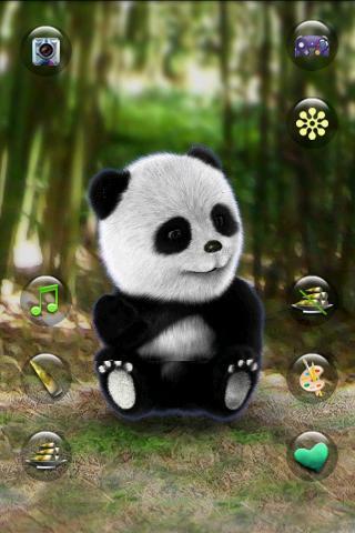 Talking Panda - screenshot
