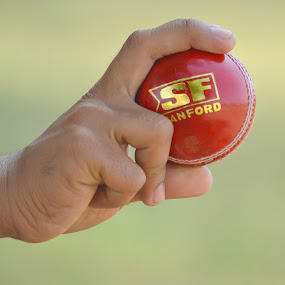 by Varun Jain - Sports & Fitness Cricket
