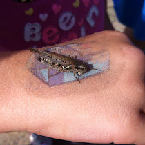Kids Discoveries of Ontario