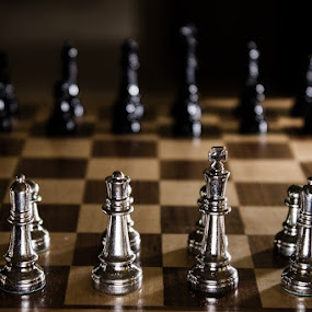 Game Of Kings by Paul Cushing - Artistic Objects Toys ( queen, royalty, chess, game, board, king )