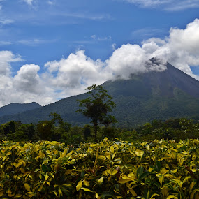 Arenal Volcano by MaryBeth Schepper - Landscapes Mountains & Hills ( volcano, mountain, greenery, landscape )