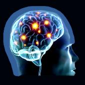 Brain Strain Trivia Vol.(I)