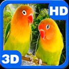 Parrots Agapornis Fischeri icon