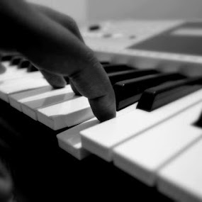 On My Keyboard by Vipin Pachat - Artistic Objects Musical Instruments
