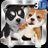 Naughty Dog 3D