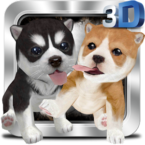 Naughty Dog 3D for PC and MAC