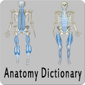 Anatomy Dictionary