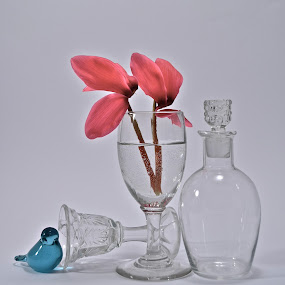 .... waiting for spring .... by Anisja Rossi-Ungaro - Artistic Objects Still Life ( bird, blue, glass, light, flower )