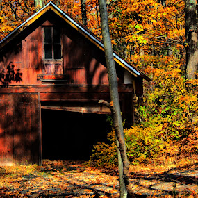 The Storey by Ward Vogt - Buildings & Architecture Decaying & Abandoned ( shack, garage, yellow, cedar lake, woods, photography, new jersey, red, barn, autumn, fall, trees, denville, the storey, nj, ward vogt )
