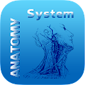 Human Anatomy System icon