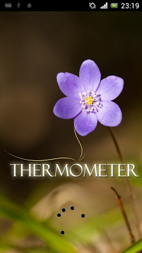 Thermometer Lite no internet