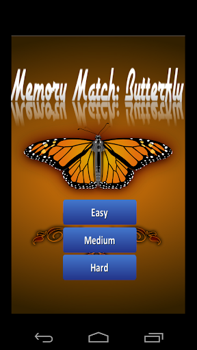 Memory Match: Butterfly
