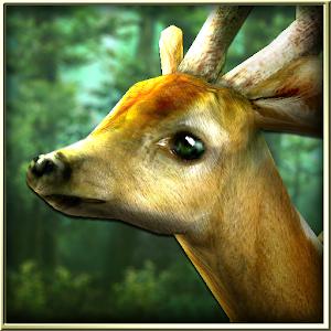 Forest HD (Unlocked) v1.6.1 APK