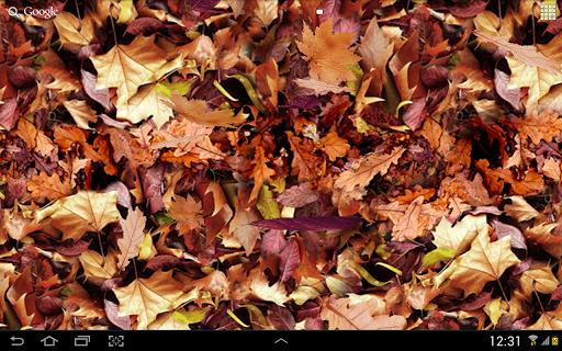 Autumn leaves 3D LWP